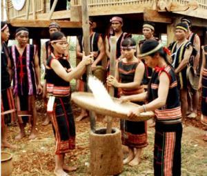 Nghi lễ cắm nêu cúng lúa của người M'nông, Đắk Nông
