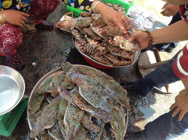 Cua ghẹ biển ở chợ Sầm Sơn