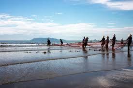 Biển Hải Hòa hoang sơ và thơ mộng