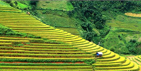 Vẻ đẹp hùng vĩ, bao la và thơ mộng của núi rừng Mai Châu