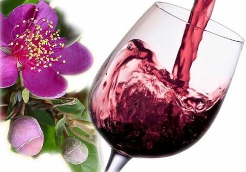 Rượu sim Phú Quốc hương vị đặc biệt thơm ngon