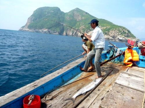 Câu cá cùng ngư dân trên biển