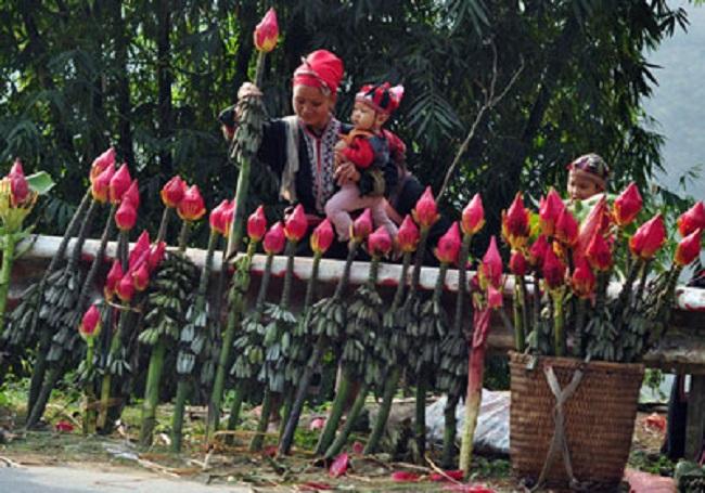 Hoa chuối được sử dụng rất nhiều tại hội hoa chuối