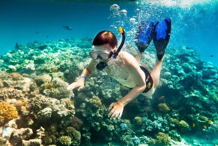 Lặn ngắm san hô - vẻ đẹp đáy đại dương