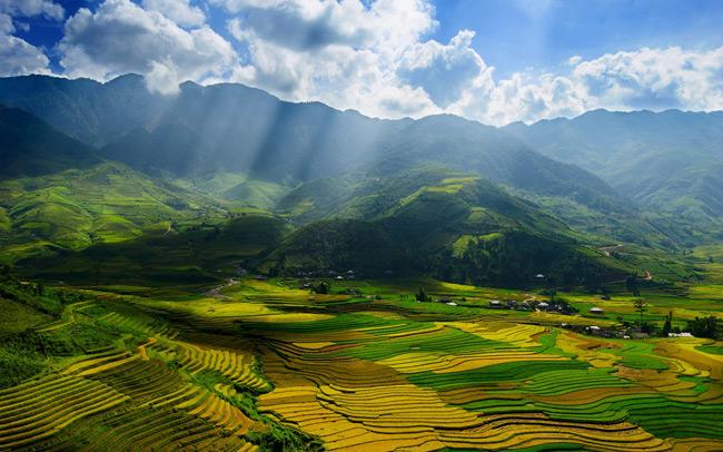 Vẻ đẹp thơ mộng của thung lũng Mai Châu mùa lúa chín