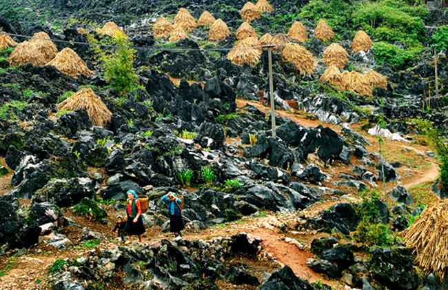 Thiên nhiên hoang sơ và kì vĩ của cao nguyên đá Hà Giang