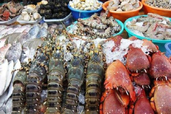 Chợ hải sản ở Sầm Sơn